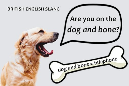 Slang - Dog and bone