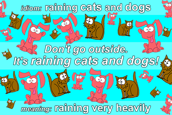 Is Is It S Raining Cats Or Dogs An Idiom